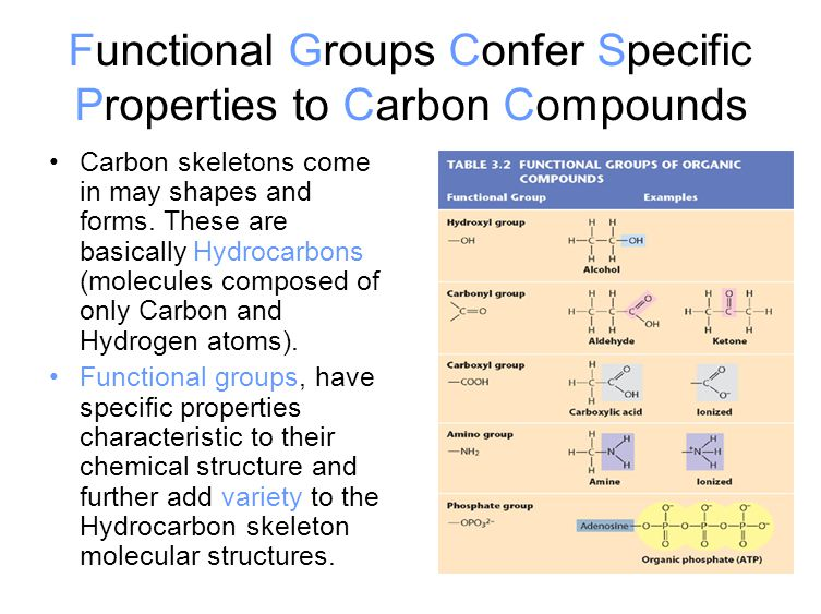 Functional Groups Confer Specific Properties to Carbon Compounds