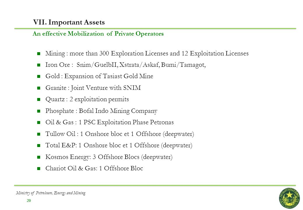 VII. Important Assets An effective Mobilization of Private Operators. Mining : more than 300 Exploration Licenses and 12 Exploitation Licenses.