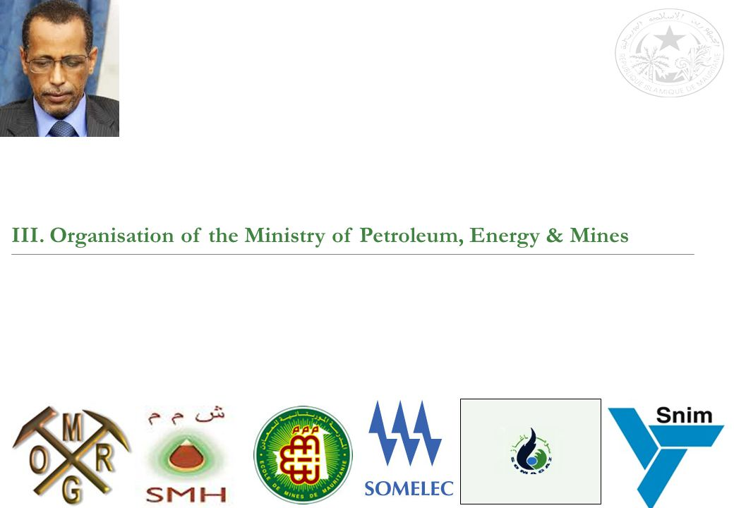 III. Organisation of the Ministry of Petroleum, Energy & Mines