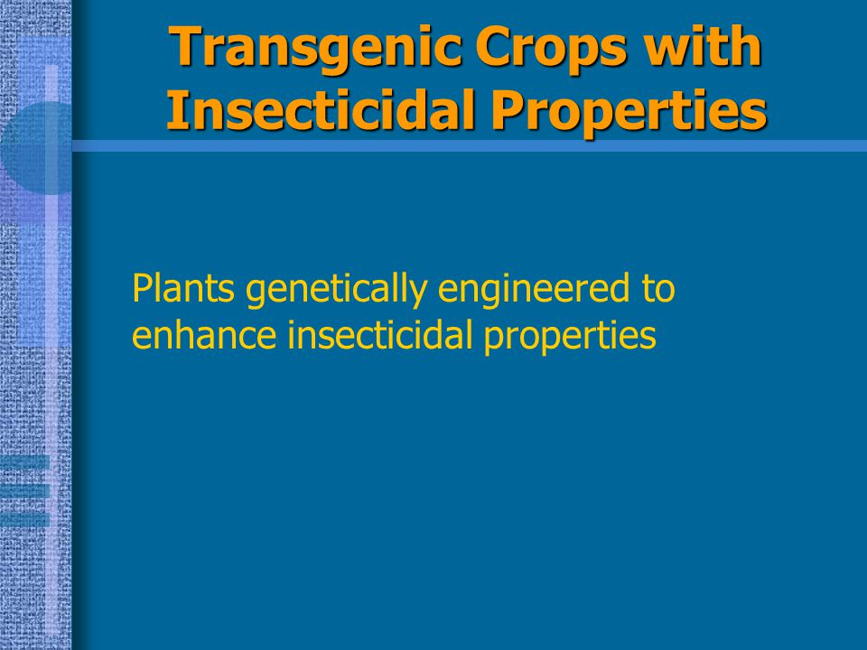 Transgenic Crops with Insecticidal Properties
