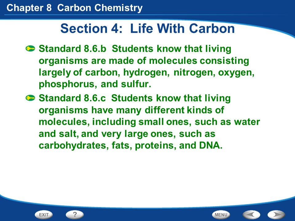 Section 4: Life With Carbon