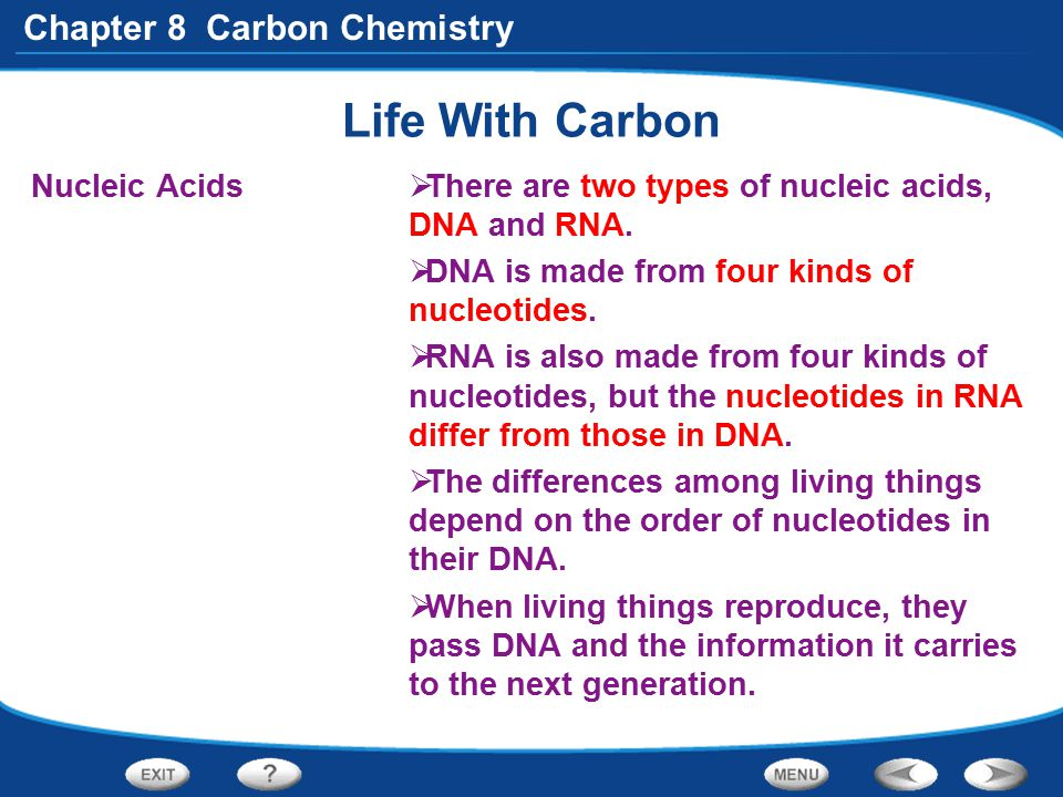 Life With Carbon Nucleic Acids