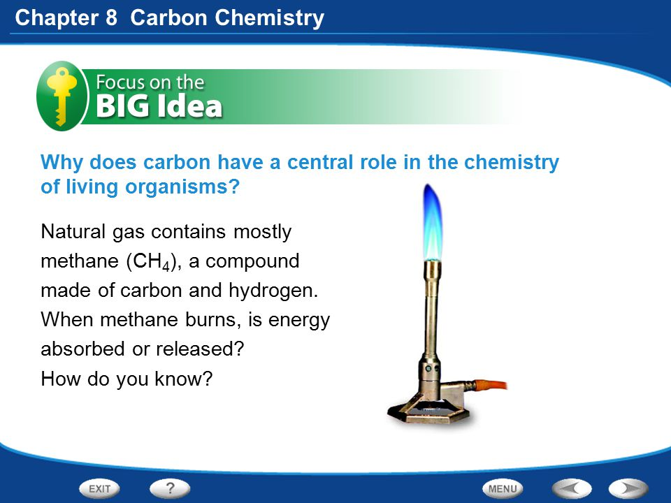 Why does carbon have a central role in the chemistry of living organisms