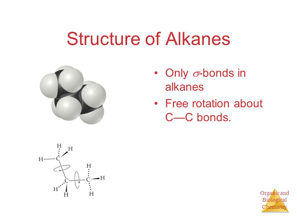 Structure of Alkanes Only -bonds in alkanes