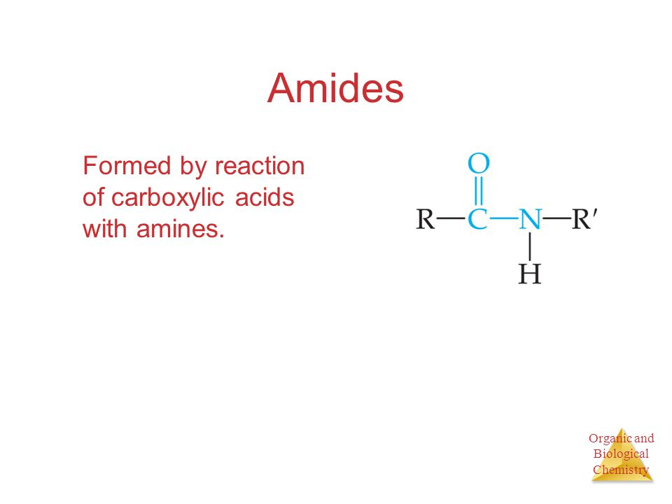 Amides Formed by reaction of carboxylic acids with amines.