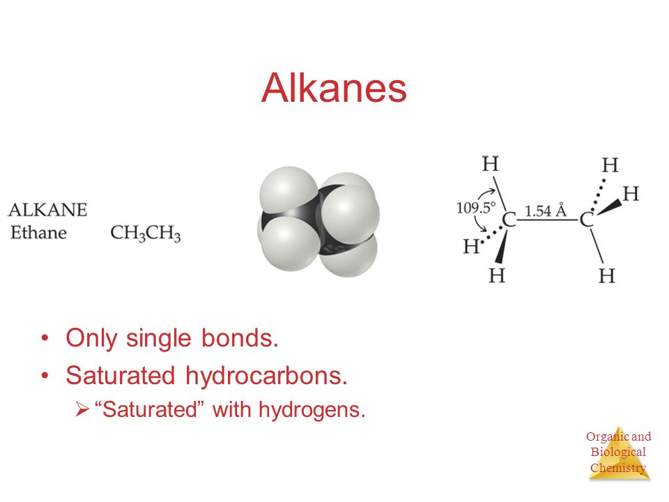 Alkanes Only single bonds. Saturated hydrocarbons.