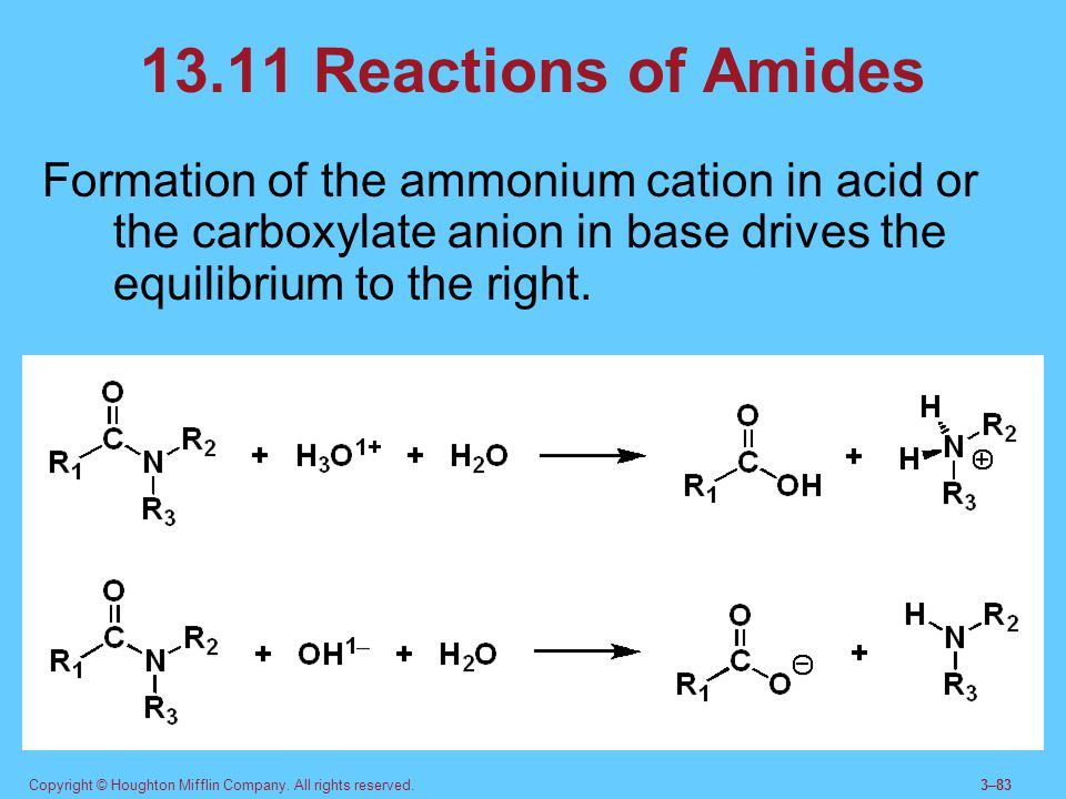 13.11 Reactions of Amides Formation of the ammonium cation in acid or the carboxylate anion in base drives the equilibrium to the right.