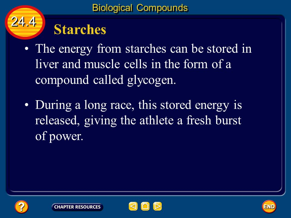 Biological Compounds 24.4. Starches. The energy from starches can be stored in liver and muscle cells in the form of a compound called glycogen.