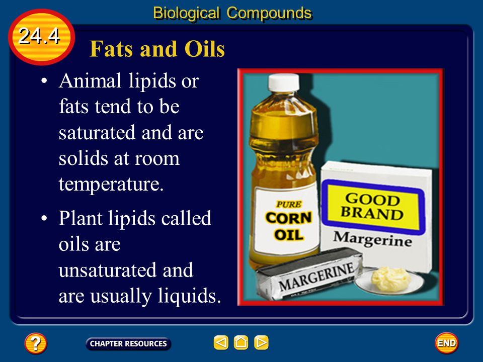 Biological Compounds 24.4. Fats and Oils. Animal lipids or fats tend to be saturated and are solids at room temperature.