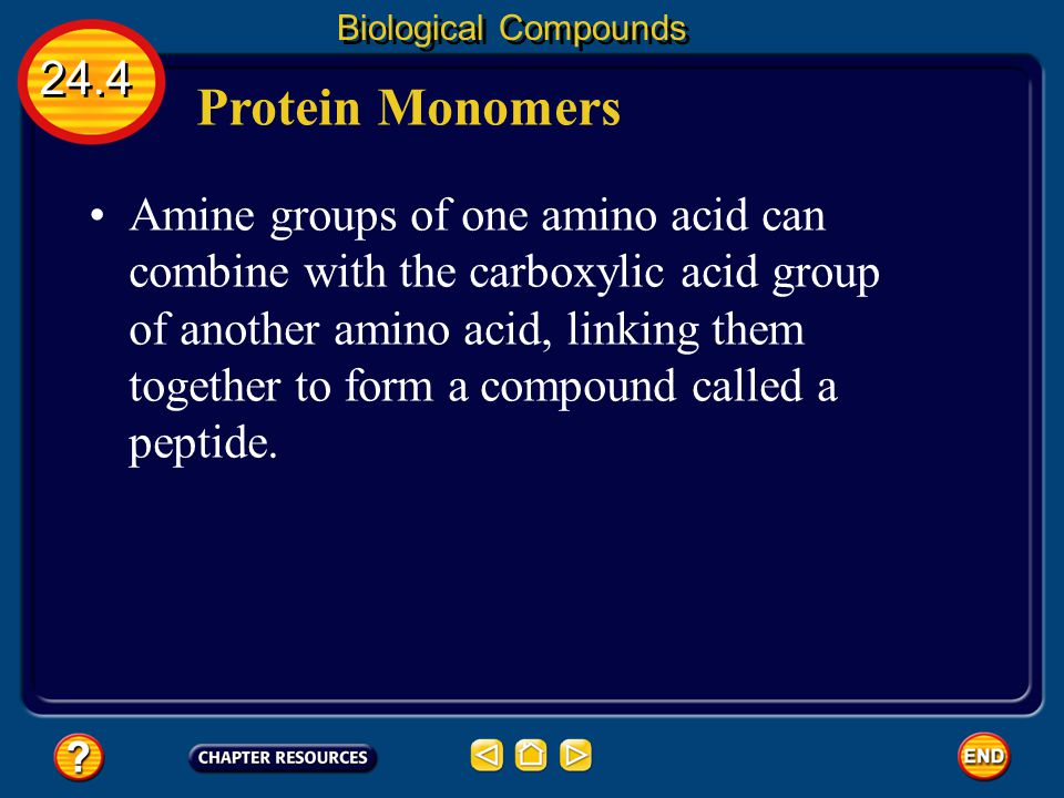 Biological Compounds 24.4. Protein Monomers.