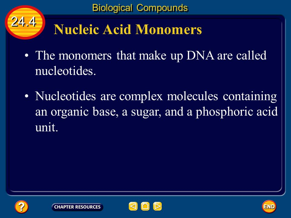 Biological Compounds 24.4. Nucleic Acid Monomers. The monomers that make up DNA are called nucleotides.