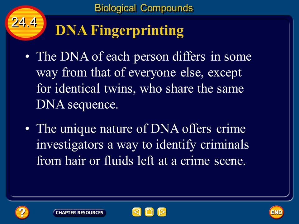 Biological Compounds 24.4. DNA Fingerprinting.