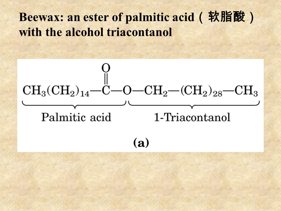 Beewax: an ester of palmitic acid(软脂酸) with the alcohol triacontanol