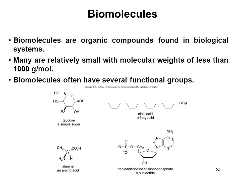 Biomolecules Biomolecules are organic compounds found in biological systems.