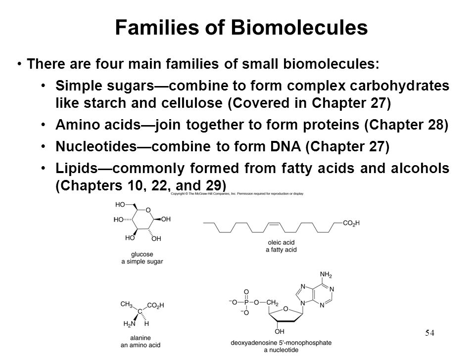 Families of Biomolecules