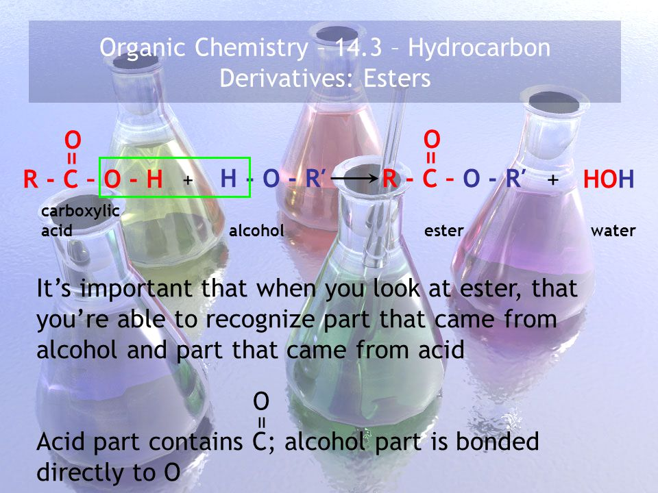 Organic Chemistry – 14.3 – Hydrocarbon Derivatives: Esters