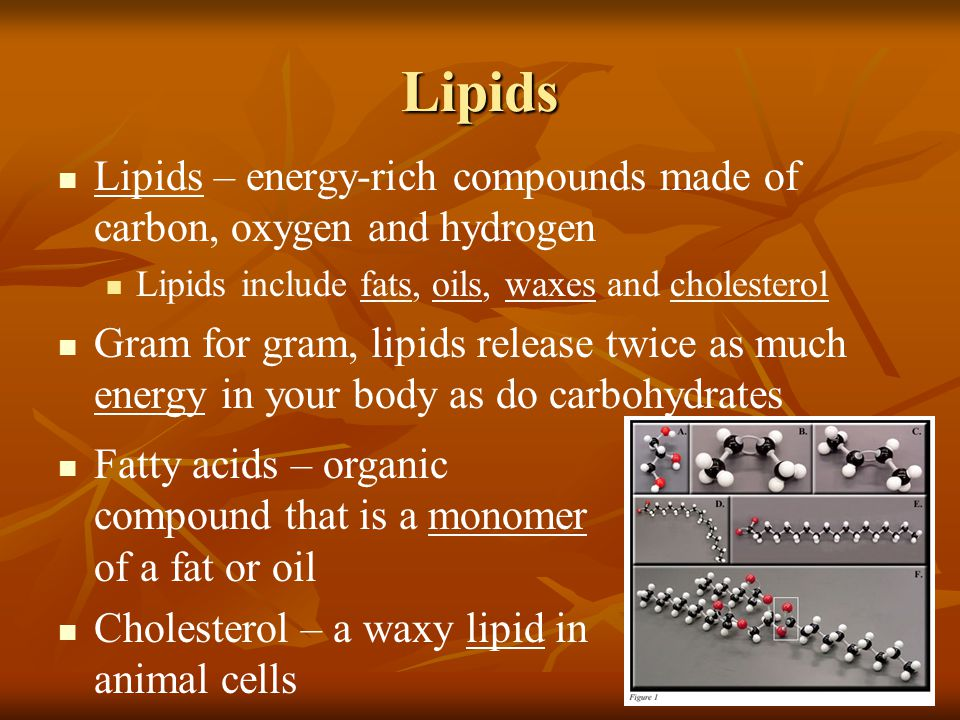 Lipids Lipids – energy-rich compounds made of carbon, oxygen and hydrogen. Lipids include fats, oils, waxes and cholesterol.