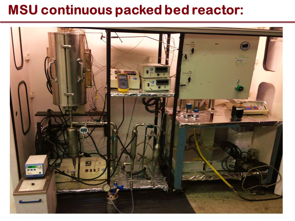 MSU continuous packed bed reactor: