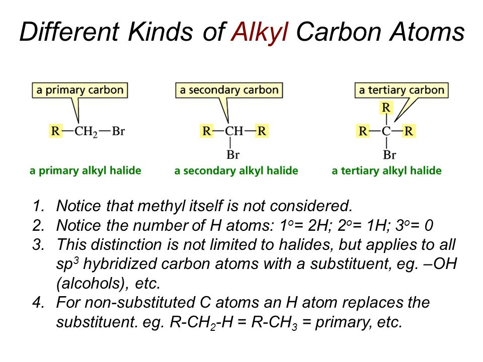 Different Kinds of Alkyl Carbon Atoms
