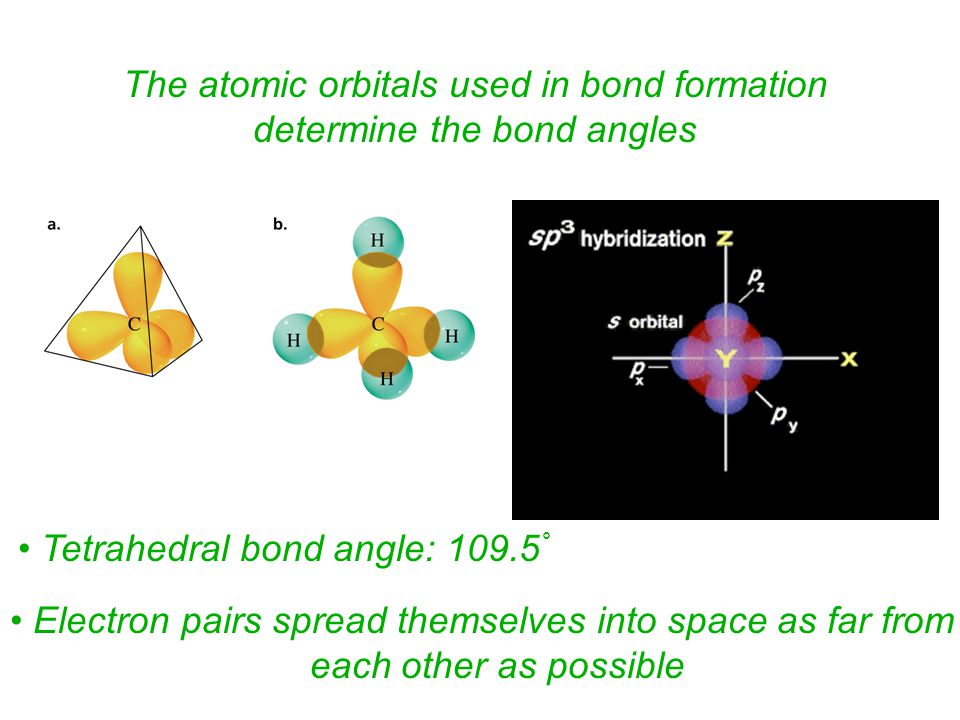 The atomic orbitals used in bond formation determine the bond angles