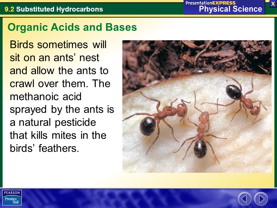Organic Acids and Bases