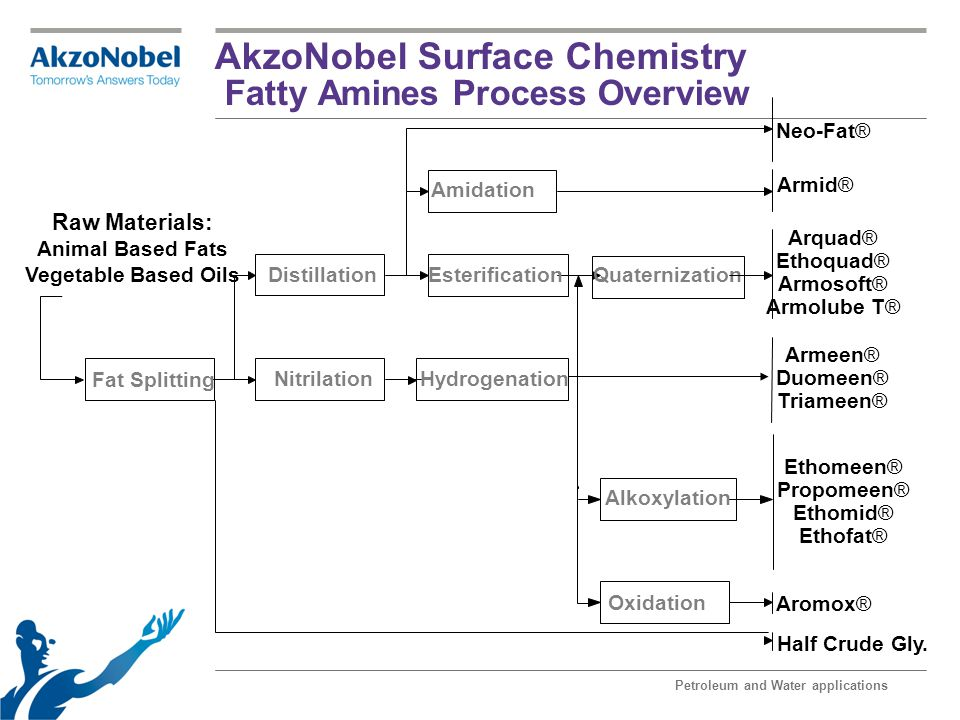 AkzoNobel Surface Chemistry Fatty Amines Process Overview