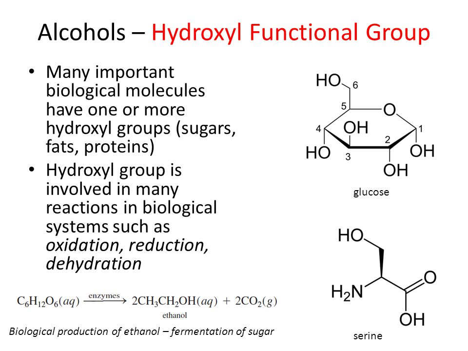Alcohols – Hydroxyl Functional Group