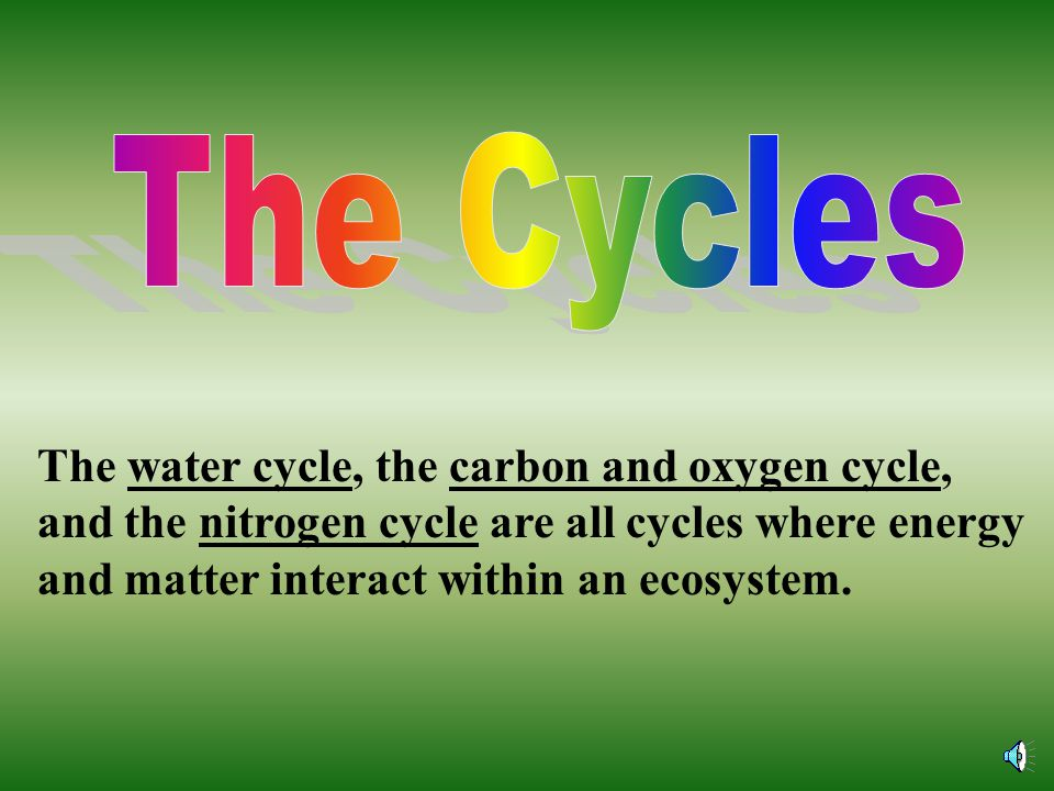 The Cycles The water cycle, the carbon and oxygen cycle, and the nitrogen cycle are all cycles where energy and matter interact within an ecosystem.