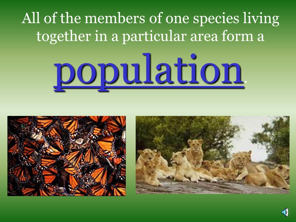 All of the members of one species living together in a particular area form a population.