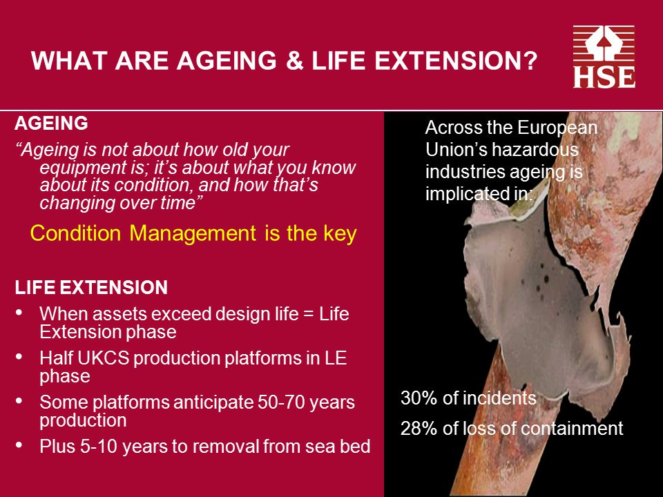 WHAT ARE AGEING & LIFE EXTENSION
