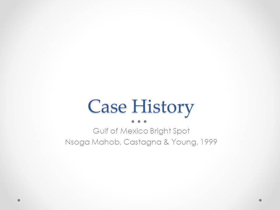 Case History Gulf of Mexico Bright Spot