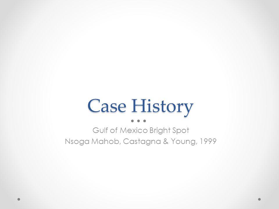 Case History Gulf of Mexico Bright Spot