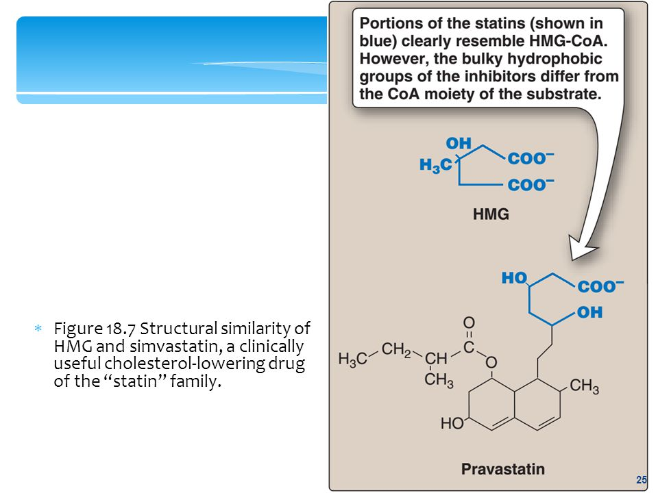 Figure 18.7 Structural similarity of HMG and simvastatin, a clinically useful cholesterol-lowering drug of the statin family.
