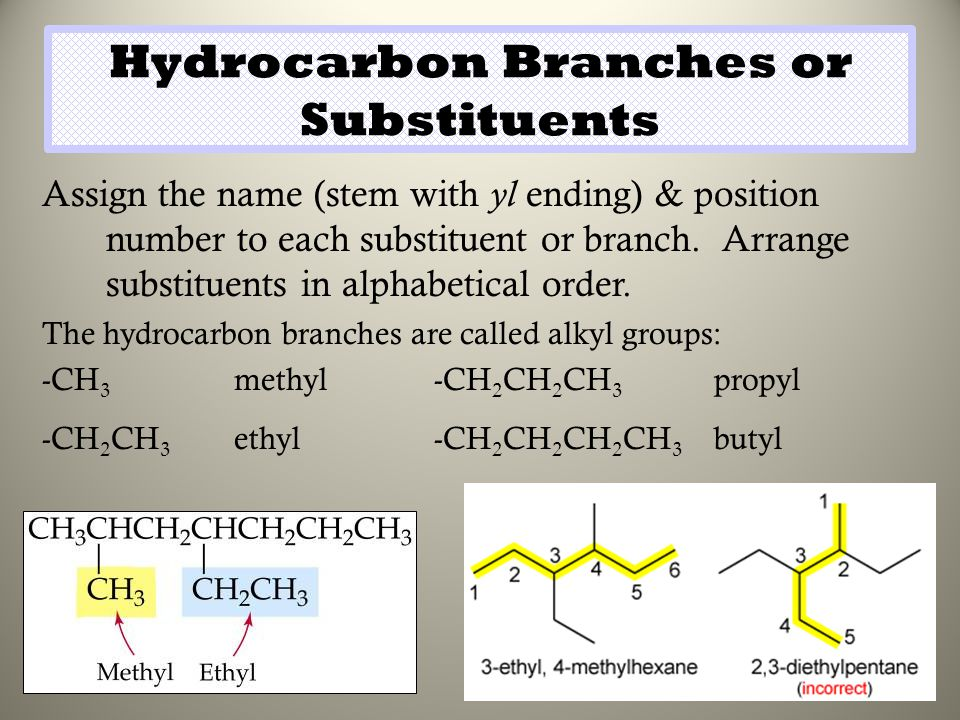 Hydrocarbon Branches or Substituents