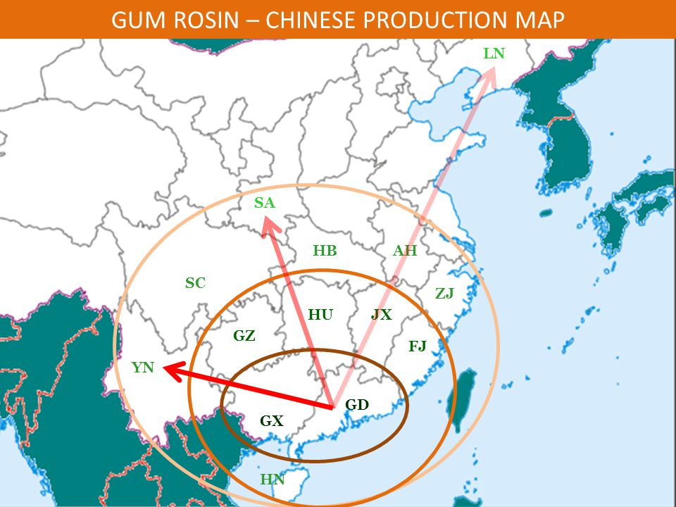 GUM ROSIN – CHINESE PRODUCTION MAP