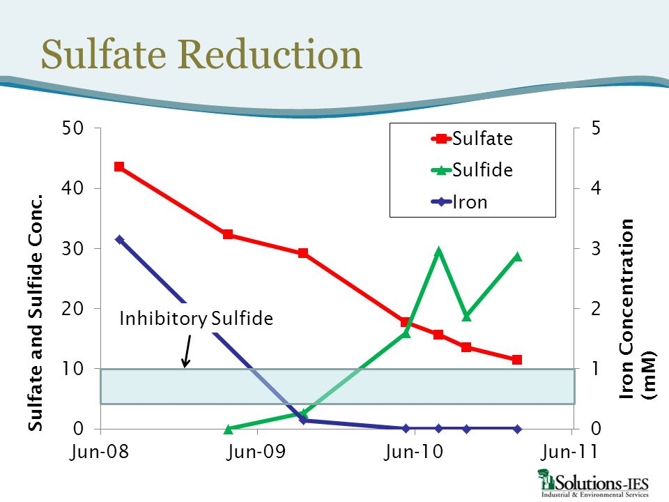 Sulfate Reduction Iron Concentration (mM) Inhibitory Sulfide