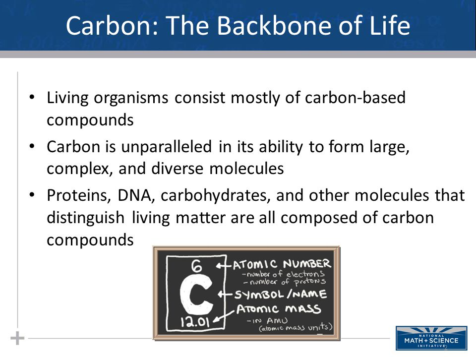 Carbon: The Backbone of Life