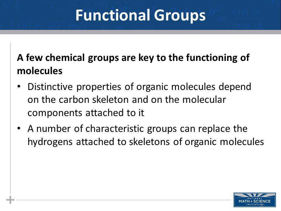 Functional Groups A few chemical groups are key to the functioning of molecules.