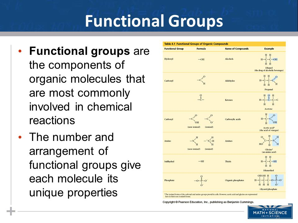 Functional Groups Functional groups are the components of organic molecules that are most commonly involved in chemical reactions.