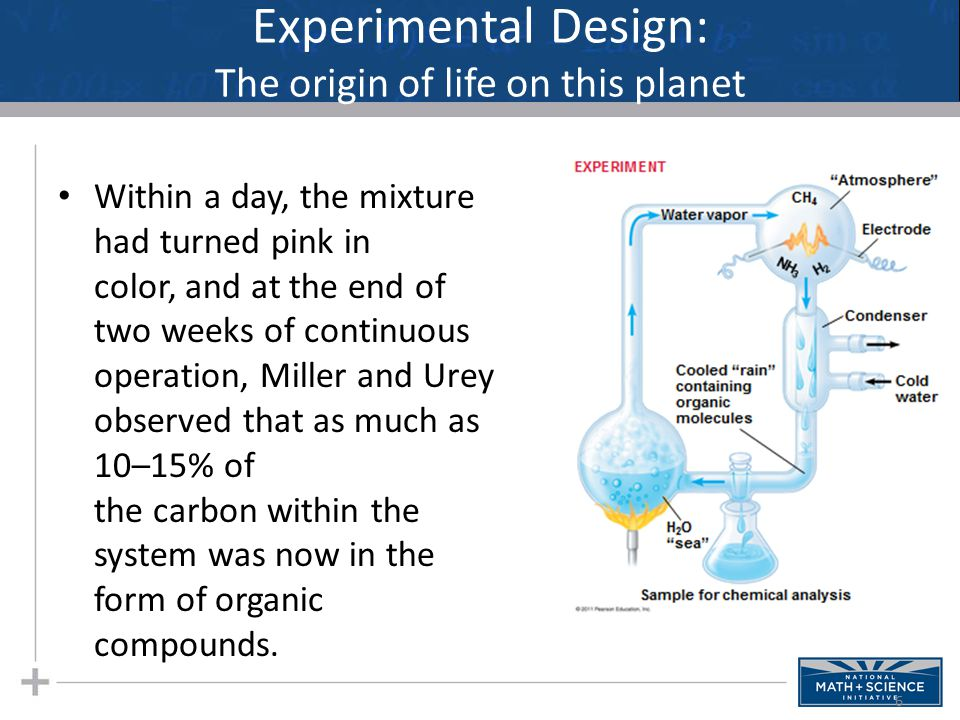 Experimental Design: The origin of life on this planet