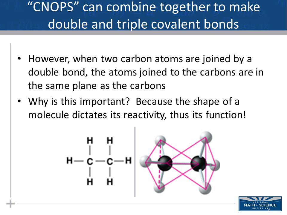 CNOPS can combine together to make double and triple covalent bonds