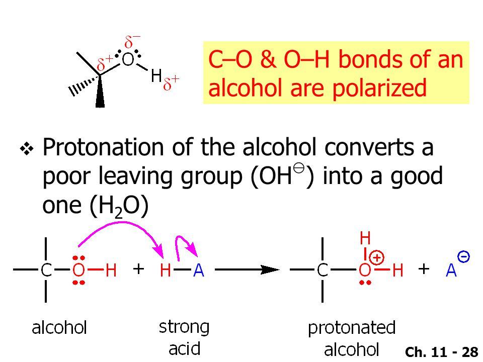 C–O & O–H bonds of an alcohol are polarized.