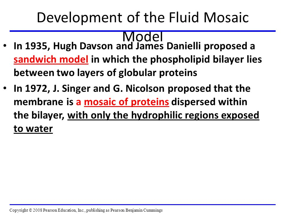 Development of the Fluid Mosaic Model