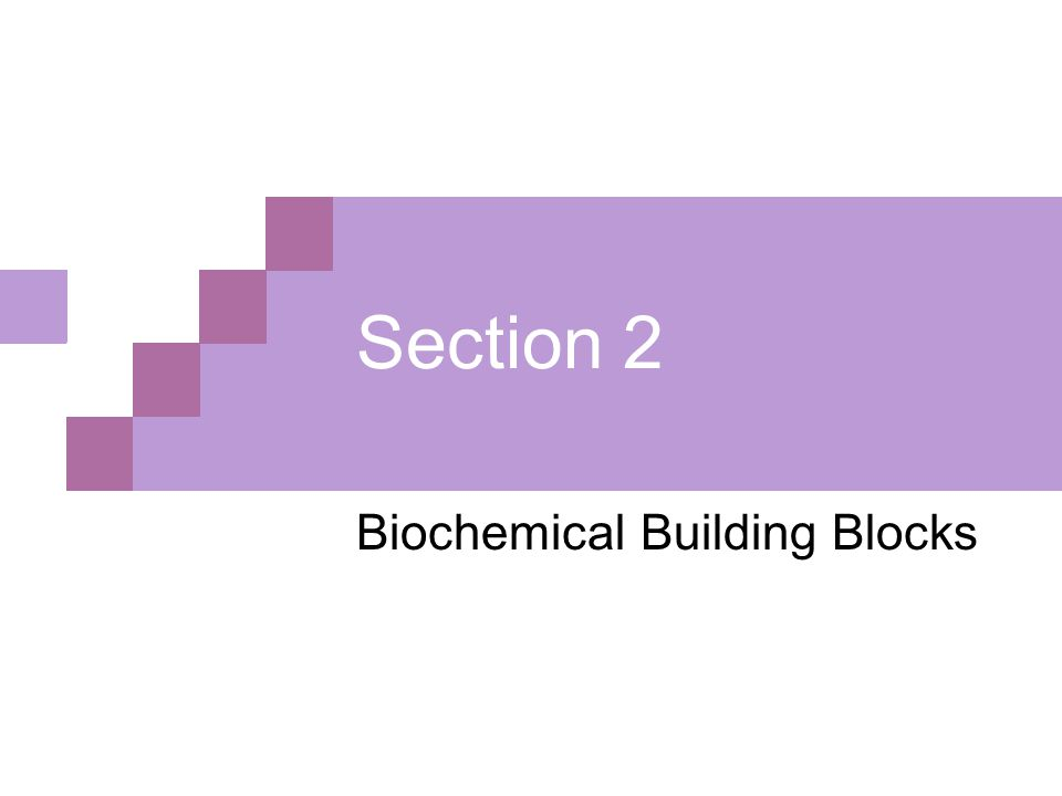 Biochemical Building Blocks