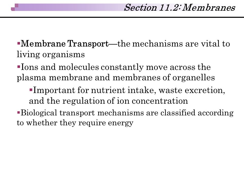 Section 11.2: Membranes Membrane Transport—the mechanisms are vital to living organisms.