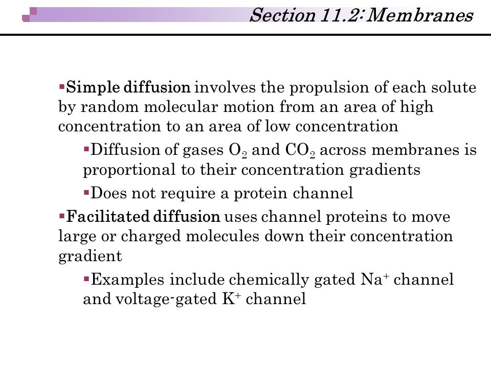 Section 11.2: Membranes