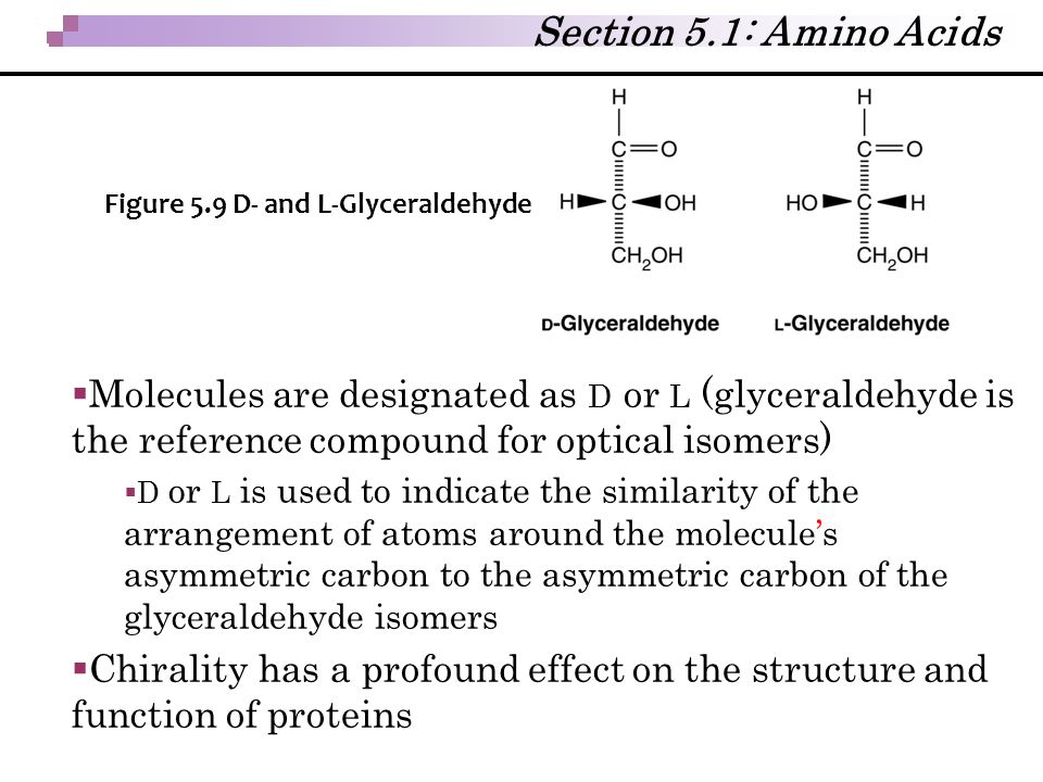 Section 5.1: Amino Acids Figure 5.9 D- and L-Glyceraldehyde.