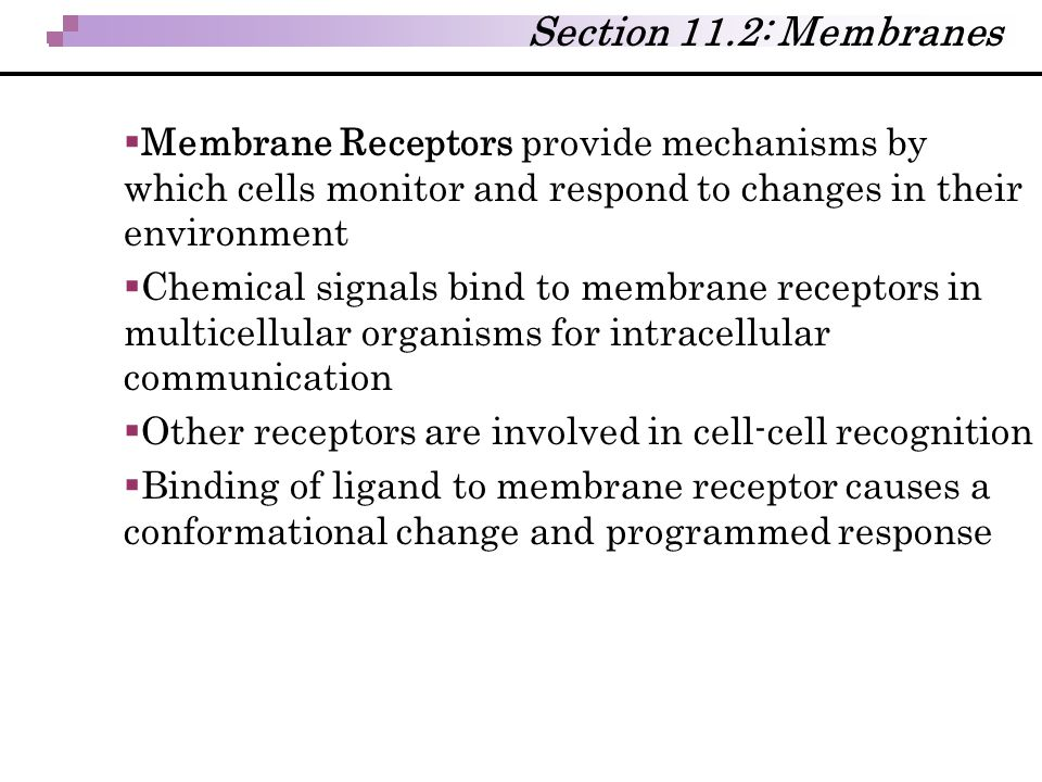 Section 11.2: Membranes Membrane Receptors provide mechanisms by which cells monitor and respond to changes in their environment.