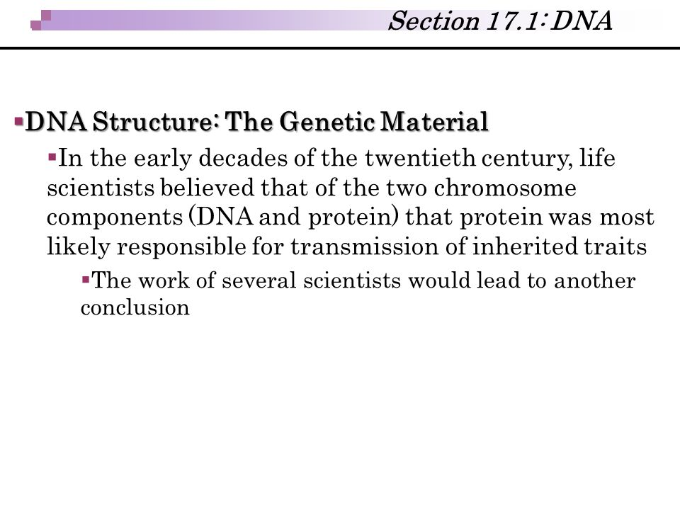 DNA Structure: The Genetic Material