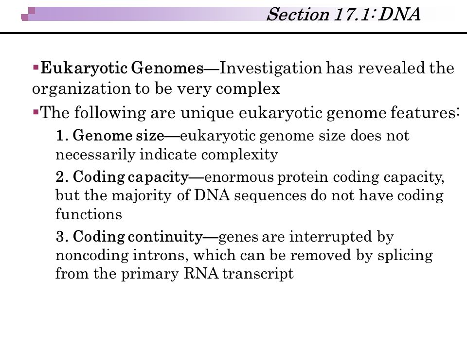 Section 17.1: DNA Eukaryotic Genomes—Investigation has revealed the organization to be very complex.